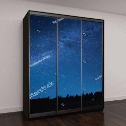 """Шкаф купе с фотопечатью """"Синее темное ночное небо с множеством звезд над полем деревьев"""""""
