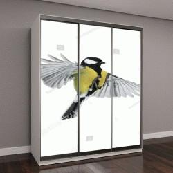 """Шкаф купе с фотопечатью """"птица летит на белом фоне широко расправив крылья и перья"""""""