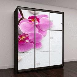 """Шкаф купе с фотопечатью """"Розовые орхидеи с бутонами"""""""