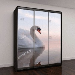 """Шкаф купе с фотопечатью """"лебедь на голубом озере """""""