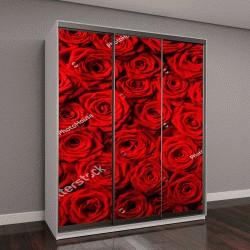 """Шкаф купе с фотопечатью """"красные розы """""""