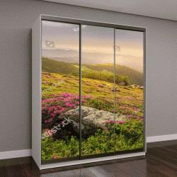 """Шкаф купе с фотопечатью """"Весенний пейзаж в горах с цветами, рододендрон и утреннее солнце"""""""