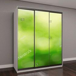 """Шкаф купе с фотопечатью """"зеленый фон природы, выборочный фокус"""""""