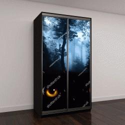 """Шкаф купе с фотопечатью """"Темная серия - взгляд из темноты"""""""
