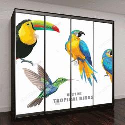 """Шкаф купе с фотопечатью """"Коллекция тропических птиц: попугаи, колибри и Тукан"""""""