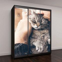 """Шкаф купе с фотопечатью """"человек в исландском свитере, который держит и целует кошку"""""""