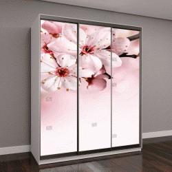 """Шкаф купе с фотопечатью """"фон с розовым цветком"""""""