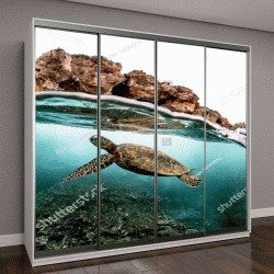 """Шкаф купе с фотопечатью """"Красивый подводный мир океана, морская черепаха"""""""
