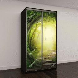 """Шкаф купе с фотопечатью """"Дорога в волшебный темный лес"""""""
