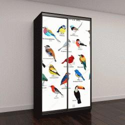"""Шкаф купе с фотопечатью """"большой набор птиц"""""""