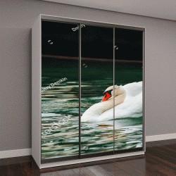 """Шкаф купе с фотопечатью """"Белый лебедь плавает в воде """""""