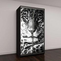 """Шкаф купе с фотопечатью """"Ягуар или Леопард портрет"""""""