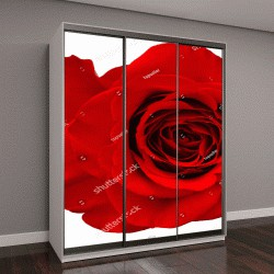 """Шкаф купе с фотопечатью """"красная роза, изолированные на белом фоне"""""""