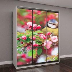 """Шкаф купе с фотопечатью """"синичка птица в саду среди цветущих веток розовой сакуры весной"""""""