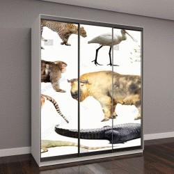 """Шкаф купе с фотопечатью """"азиатские животные"""""""