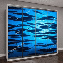 """Шкаф купе с фотопечатью """"Косяк рыбы в голубой воде океана"""""""
