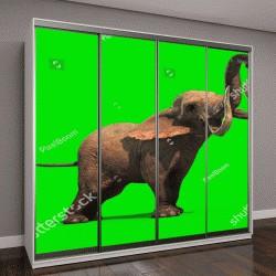 """Шкаф купе с фотопечатью """"слоненок на зеленом фоне"""""""