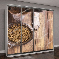 """Шкаф купе с фотопечатью """"корм для собак и собаки на деревянном полу"""""""
