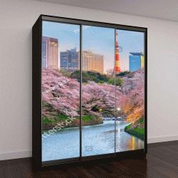 """Шкаф купе с фотопечатью """"цветение сакуры в Токио, Япония"""""""