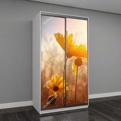 """Шкаф купе с фотопечатью """"Цветы на рассвете"""""""