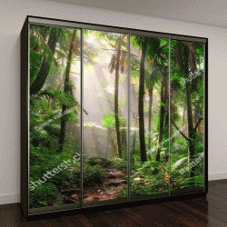 """Шкаф купе с фотопечатью """"Красивая дорога в джунглях через Национальный лес """""""
