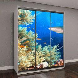 """Шкаф купе с фотопечатью """"Подводные мир кораллового рифа с акулами"""""""