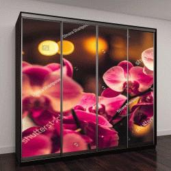 """Шкаф купе с фотопечатью """"Цветок орхидеи в зимний день """""""