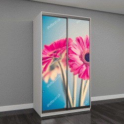 """Шкаф купе с фотопечатью """"Две Розовые Цветы"""""""