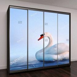 """Шкаф купе с фотопечатью """"Белый лебедь в туманном озере на рассвете"""""""