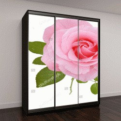 """Шкаф купе с фотопечатью """"розовая роза, изолированные на белом фоне"""""""