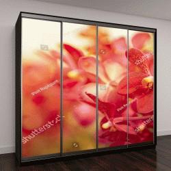 """Шкаф купе с фотопечатью """"Красивые фиолетовые орхидеи """""""