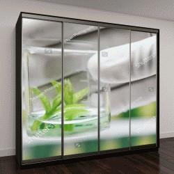 """Шкаф купе с фотопечатью """"Растения в стакане"""""""