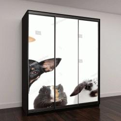 """Шкаф купе с фотопечатью """"набор домашних животных"""""""