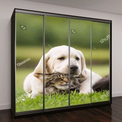 "Шкаф купе с фотопечатью ""дружба собаки и кошки """