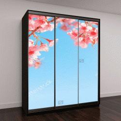 """Шкаф купе с фотопечатью """"Красивый цветок сакуры (вишни) весной"""""""