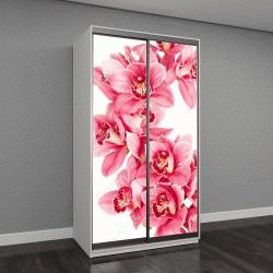 """Шкаф купе с фотопечатью """"Розовые цветки орхидеи на белом фоне"""""""