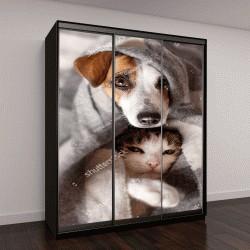 "Шкаф купе с фотопечатью ""Собака и кошка под пледом"""
