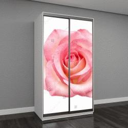 """Шкаф купе с фотопечатью """"розовая роза на белом фоне"""""""