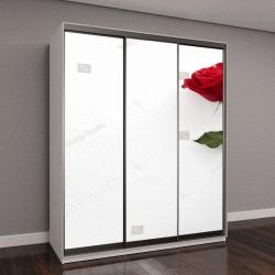 """Шкаф купе с фотопечатью """"Один красивая красная роза, изолированные на белом фоне"""""""