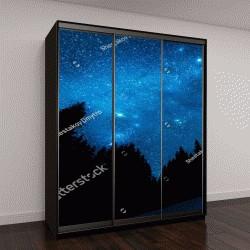 """Шкаф купе с фотопечатью """"Яркое звездное небо в ночном лесу"""""""