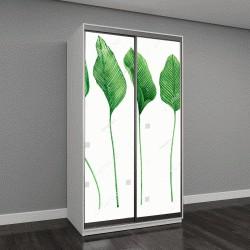 """Шкаф купе с фотопечатью """"пальмовые листья на белом фоне"""""""