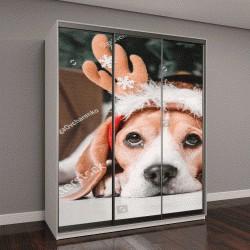 """Шкаф купе с фотопечатью """"Красивая собака бигль позирует возле новогодней елки"""""""